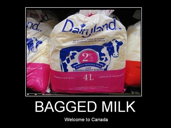 baggedmilk