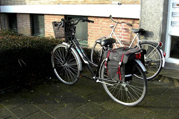 bikesheldon