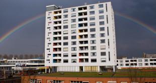 rainbowfeat